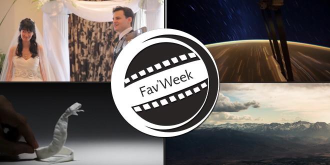 Fav'Week : Timelapse de l'espace et des USA, animaux en mouchoir, Mariage