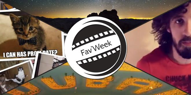 Fav'Week : Internet – le royaume des chats, Pourquoi regarder la télé ?, Dubaï, Paysages Yosemite