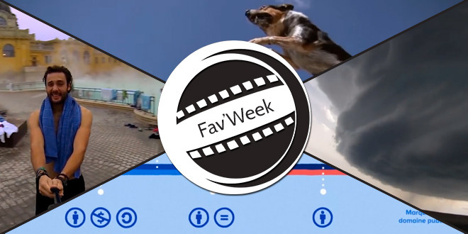 Fav'Week :  Around the World, The Parkour Dog, Creative Commons, Formation tempête