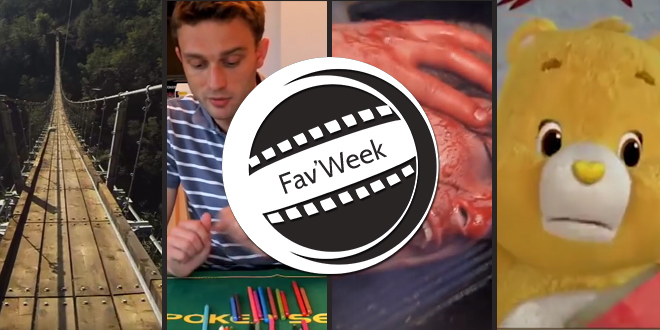 Fav'week #185 : Altruisme, Stratégie au Poker, Construction pont, Mortal Kombat IRL