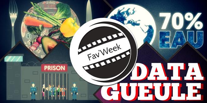 Fav'week #198 : DataGueule, où comment expliquer le monde avec le Big Data